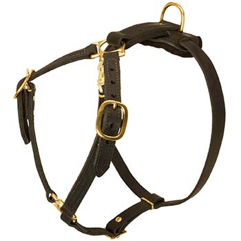 Leather Cane Corso Harness