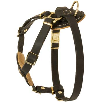Easy Adjustable Leather Harness for Cane Corso Puppy