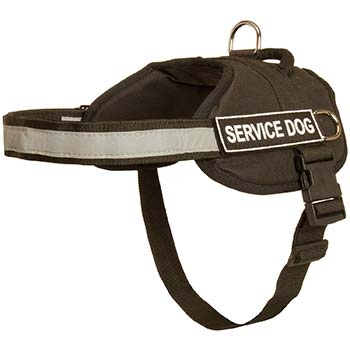 Reflective Nylon Harness for Cane Corso Activity