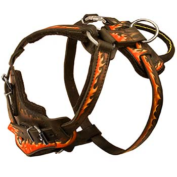Comfortable Cane Corso Leather Harness with Handle