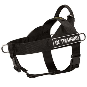 Strongest nylon dog harness