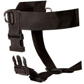 Ultra lightweight multitasking nylon dog harness