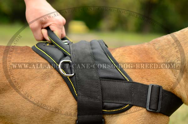 Tracking and Pulling Nylon Dog Harness