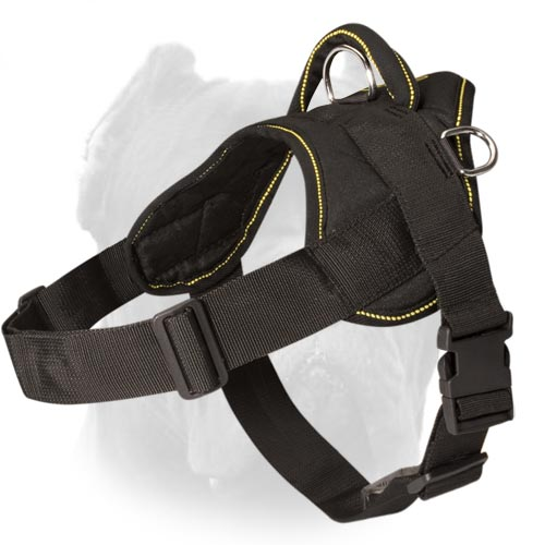 Soft Leather Padded BullDog Breed Harness