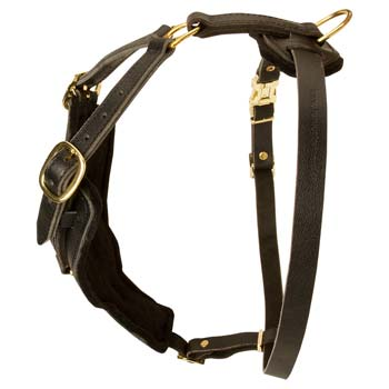 Fashion Walking Padded Leather Harness for Cane Corso