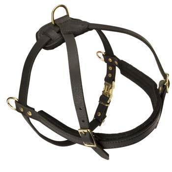 Unique pulling leather dog harness