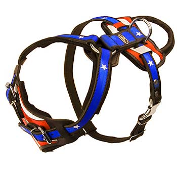 Cane Corso Leather Harness with Adjustable Straps