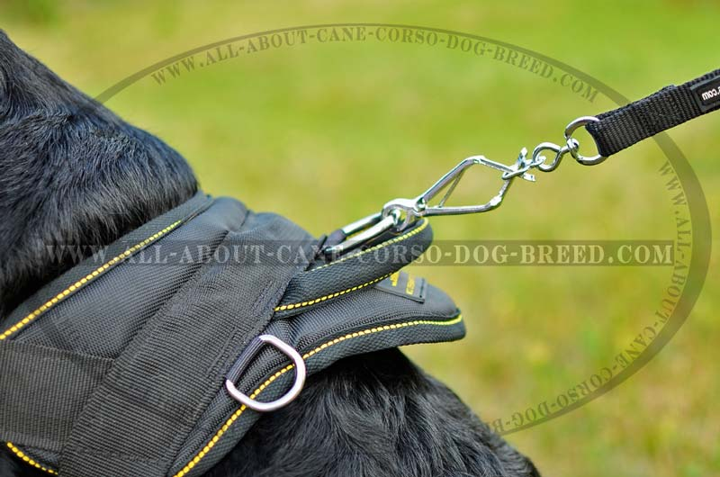 washable nylon dog harness for rottweilers