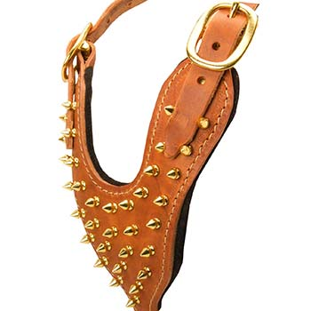 Leather Harness Chest plate with Gold Color Spikes