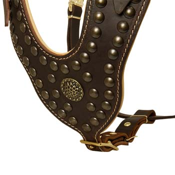 Nappa Padded Leather Chest Plate