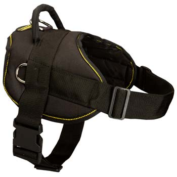 Exclusive pulling nylon dog harness for Mastino  Napoletano has 2 adjustable straps