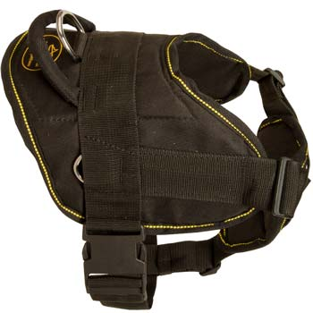 Tracking/pulling nylon Mastino Napoletano harness is great in operation