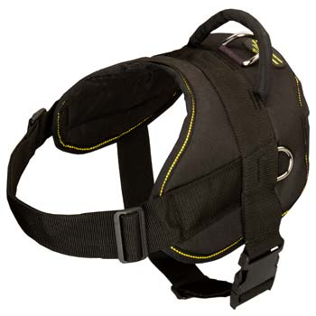 High quality nylon Mastino Napoletano harness is best  on the market