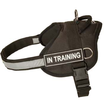 Safety nylon training Mastino Napoletano harness for police work