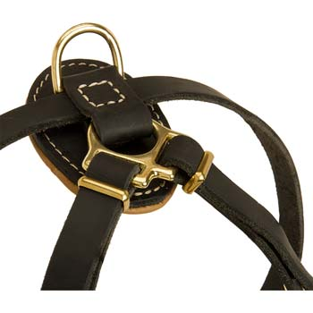 Strong Back Pad with RIng for Leash Connection