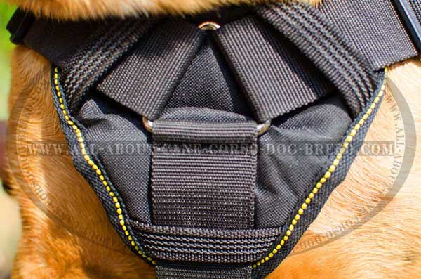 High Quality Nylon Chest Plate