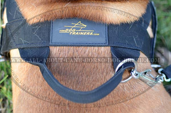 Well-Fitted Comfortable Nylon Dog Harness For  Bullmastiffs