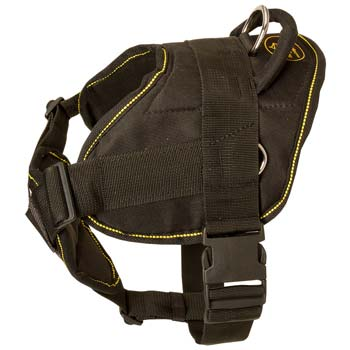 Cane Corso nylon dog harness with Chest Plate