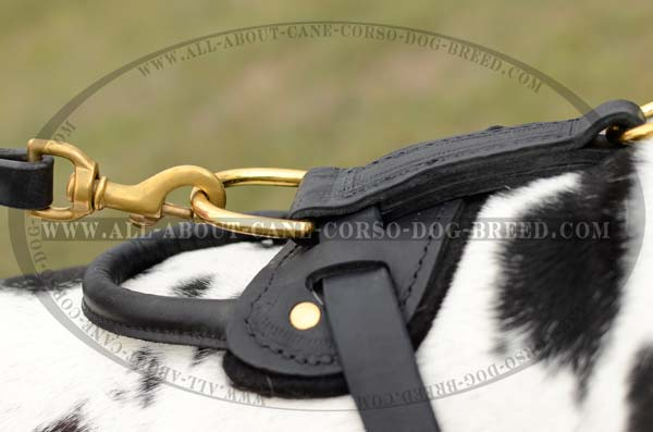 Demandable Leather Dog Harness for Great Danes
