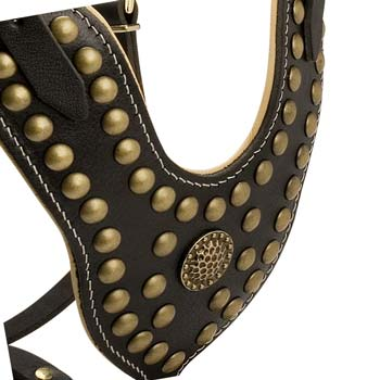 Brass studded leather dog harness for tall dogs