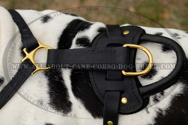 Multifunctional Leather Dog Harness with Handle