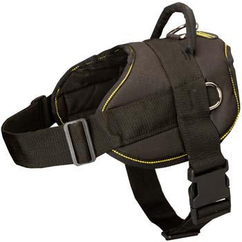 Tracking Walking Cane Corso nylon harness