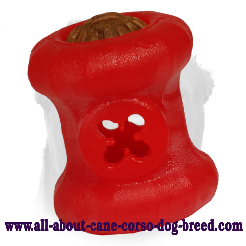 Chewing Dog Toy - Trear Holder for Cane Corso - Medium