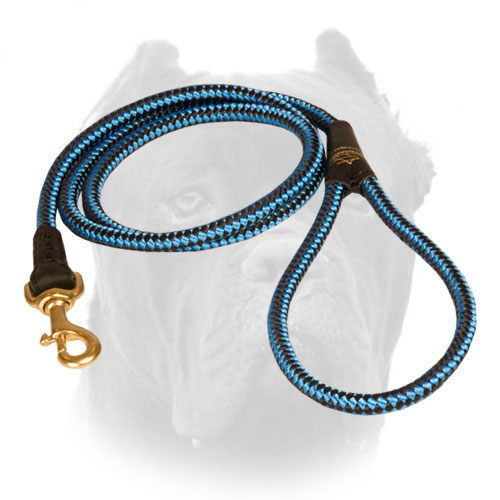Easy controlling nylon cord leash
