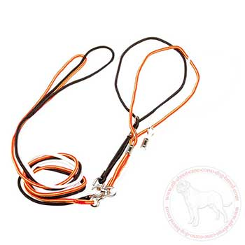 Bright nylon Cane Corso leash for dog shows