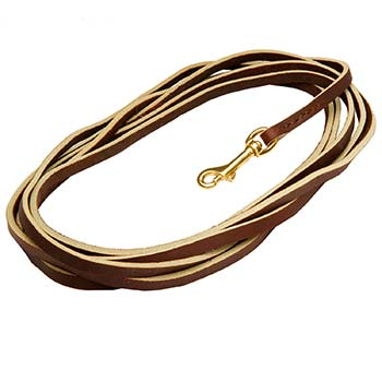 Extra Long Brown Leather Dog Leash for Tracking