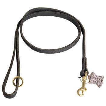 Leather Dog Leash for Training and Walking