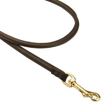 Walking Cane Corso Leash with snaphook