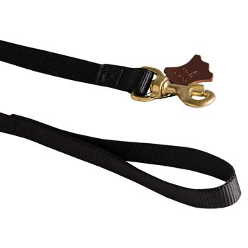 Heavy-duty and comfy handle of elegant dog nylon lead
