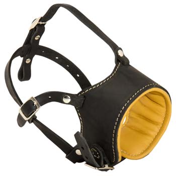 Cane Corso leather dog muzzle