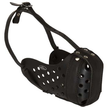 First-rate leather dog muzzle for tall dogs