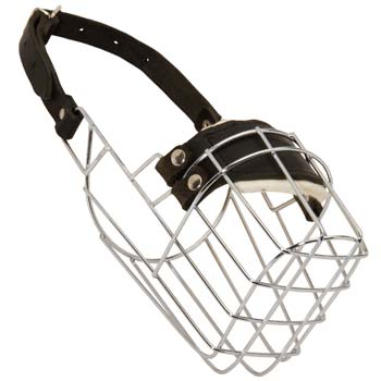 Wire basket dog muzzle for Great Dane