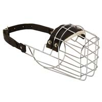 Best Fitting Wire Basket Muzzle