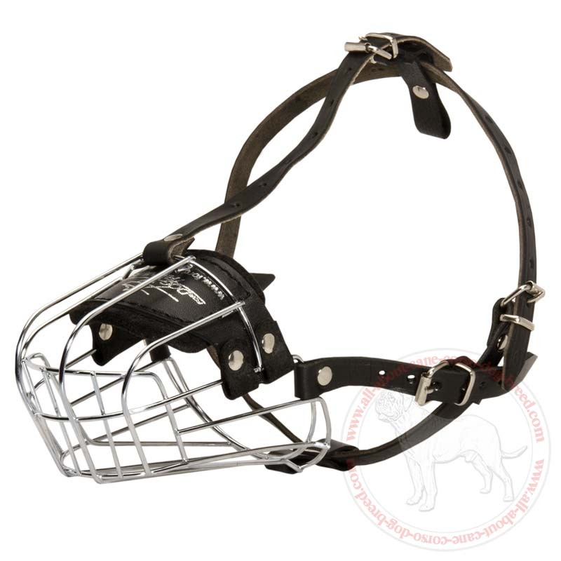 Cage Muzzle For Small Dogs