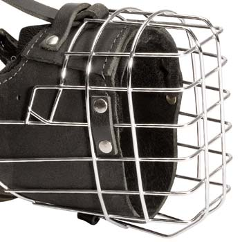 Wire cage dog muzzle with bettwen ears strap