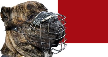 dog choose muzzle corso cane dogs muzzles breed below