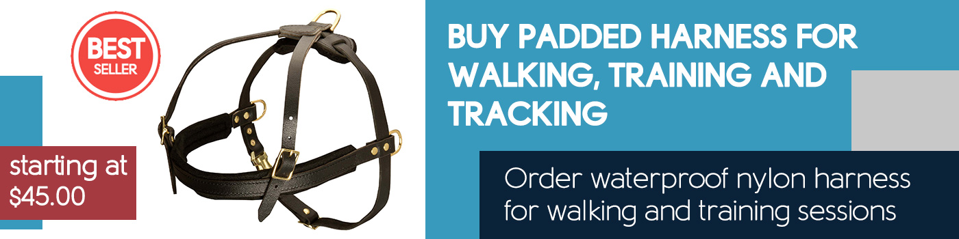 Tracking/Pulling/Agitation Leather Dog Harness for Cane Corso Breed