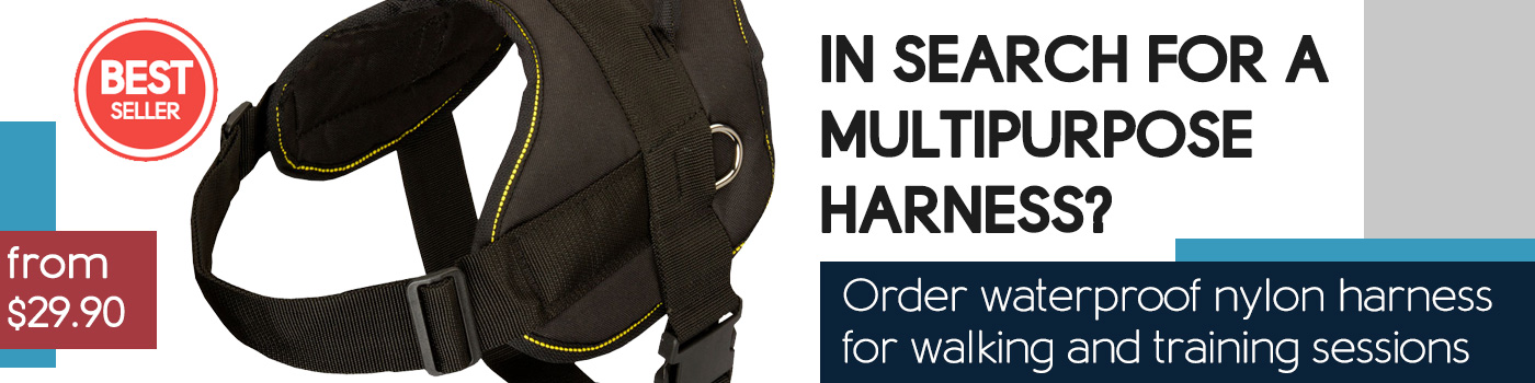 All Weather Nylon Dog Harness-SAR Rottweiler Dog Harness Padded All Over
