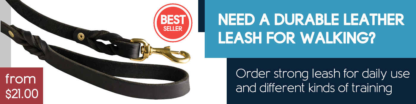 Handcrafted Leather Dog Leash for Walking and Training