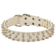 White Spiked Leather Dog Collar - Rock Style